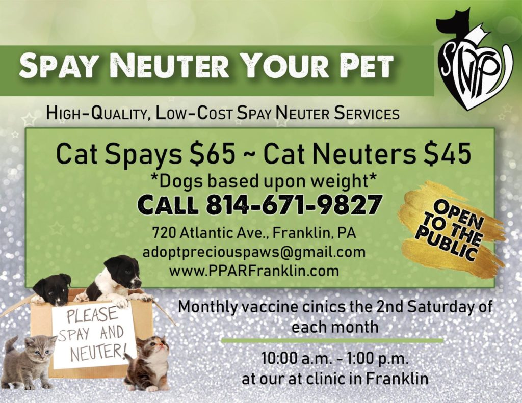 Spay Neuter Your Pet – SNYP