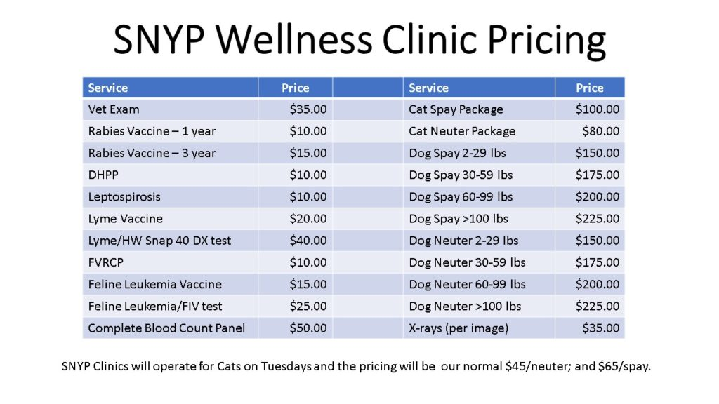 SNYP Clinic Pricing