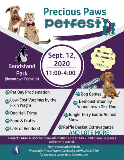 Petfest 2020 flyer graphic