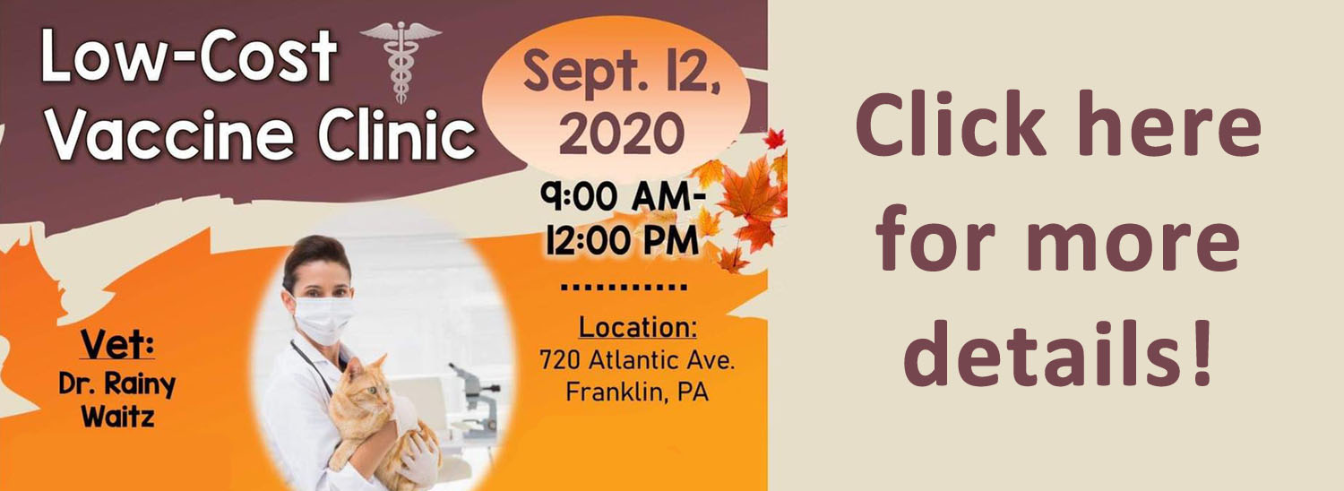 Low Cost Clinic Sept 2020
